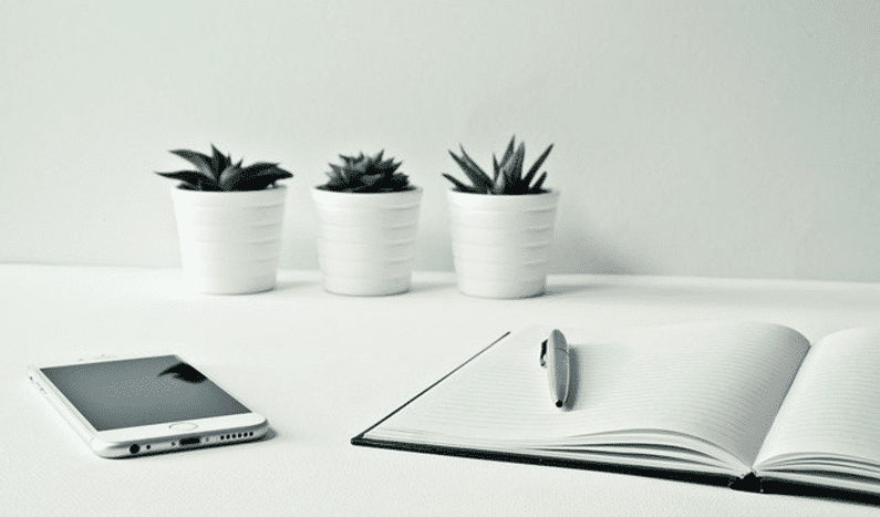 desk with plants mobile book and pen | make money from home | Peace Evolution
