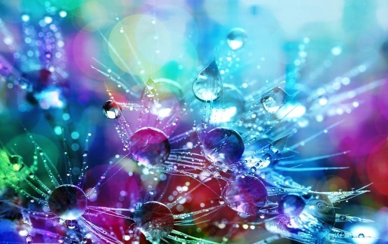 color luminescence raindrops dandelion | Peace Evolution