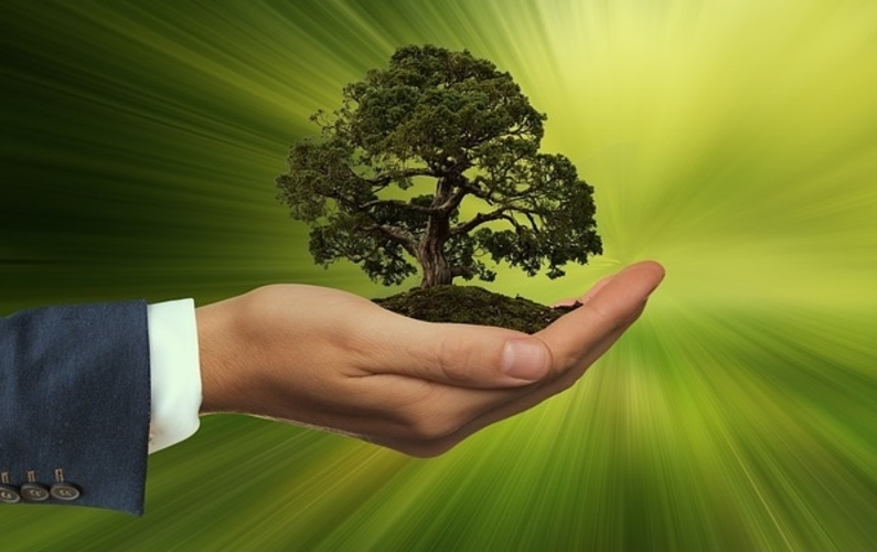 Introducing Healthy Sustaining Life On Earth