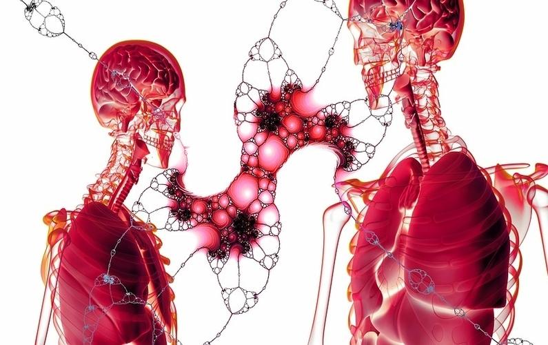 Autophagy Healing Improves Quality Of Life