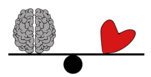which weighs heavier brain or heart | possible consequences | Peace Evolution