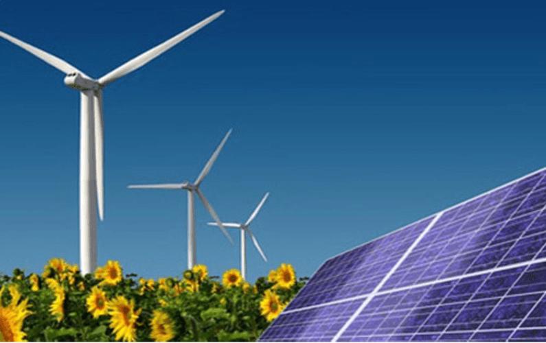 renewable energy in sunflower field | Peace Evolution