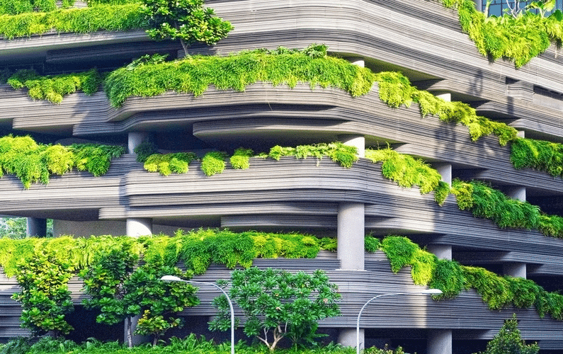 building with hanging plants | Peace Evolution