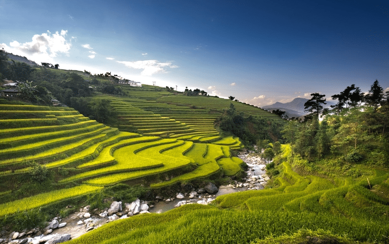 cultivated field and stream | Peace Evolution