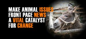 world animal day make animal issues front page news | Peace Evolution